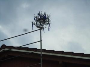 Heim Dach DSC01598
